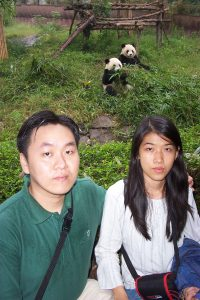 Sichuan Province: Chengdu Panda & Giant Buddha Leshan